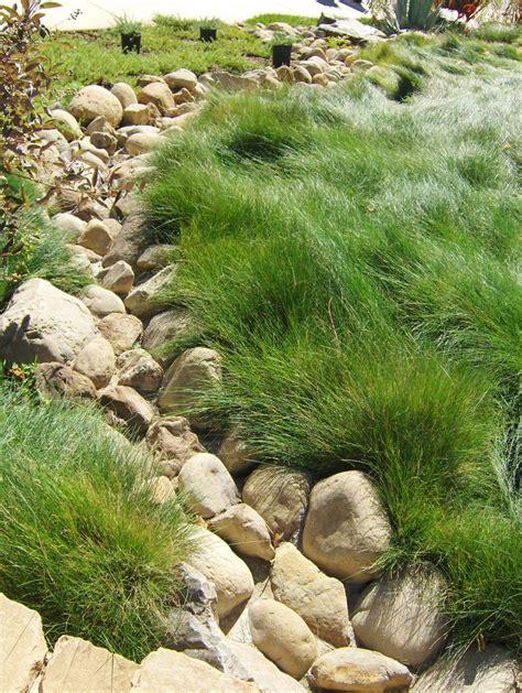 dry river bed landscape 83 best dry river bed images on pinterest landscaping