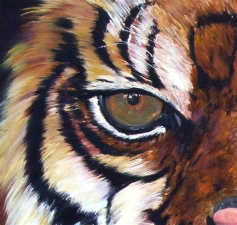 imagenes ojos de tigre imagen cabeza de tigre detalle de ojo grupos emagister com