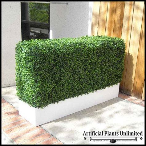 Artificial Plants For Outdoor Planters by Boxwood Outdoor Artificial Hedges With Modern Planters
