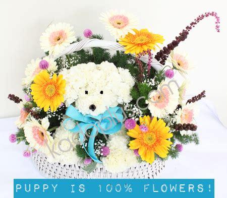 Bouquet Buket Fresh Flowers Kado Hadiah Rangkaian Bunga 9 rangkaian bunga adorable flower puppy2 toko bunga
