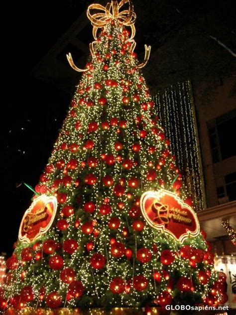 singapore city singapore orchard road christmas tree
