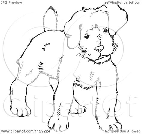 black and white coloring pages of dogs cartoon clipart of an outlined alert puppy dog black and