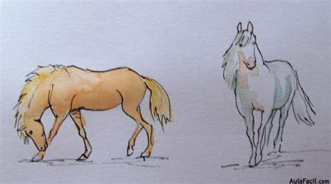 blanco y negro pintura lineal dibujar caballo ilustraci 243 n curso gratis de dibujo de caballos el pelaje
