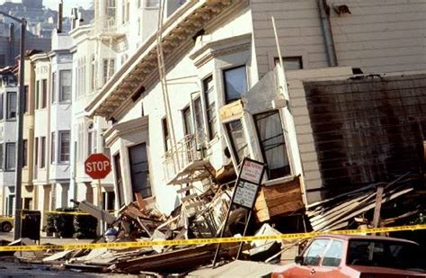 Billion Dollar San Francisco Ca November 3 2006 2 by The Loma Prieta Earthquake 1989 Animal Photo