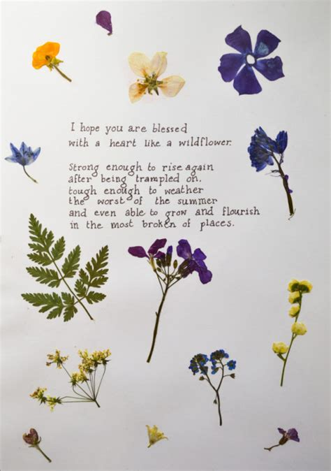 recovering the seed how to live a wholehearted books pressed flowers quotes