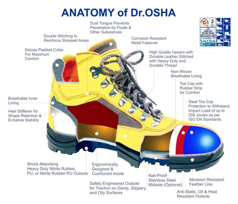 Safety Shoes Cheetah 5103hh anatomy of dr osha safety k3