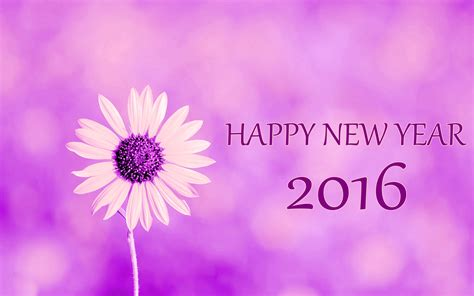 theme of new year 2016 happy new year 2016 flower images hd wallpaper 04581