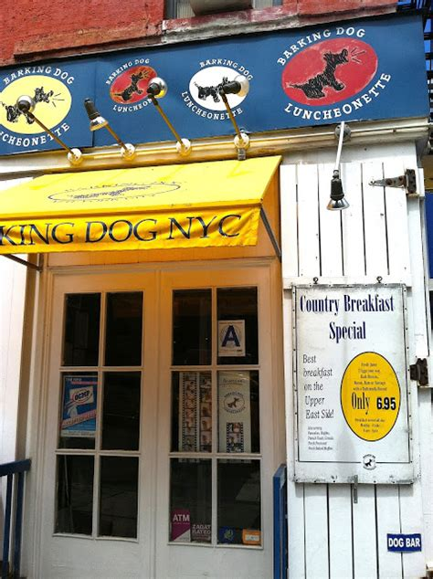 barking nyc barking wanted with hash browns tracy kaler s new york travel