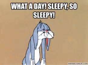 Sleepy Memes - what a day sleepy so sleepy