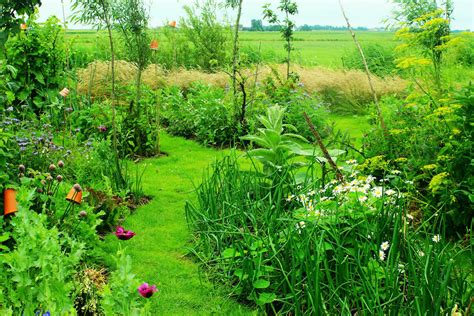What Is A Garden by What Is Permaculture Gardening An Intro To Permaculture