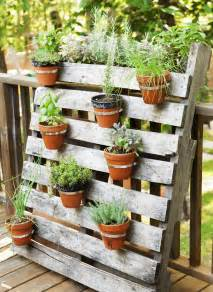 Herb Container Garden Ideas 13 Container Gardening Ideas Potted Plant Ideas We