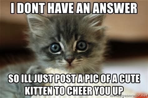 Up Meme - cheer up kitten meme www pixshark com images galleries