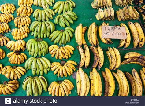 image gallery different bananas