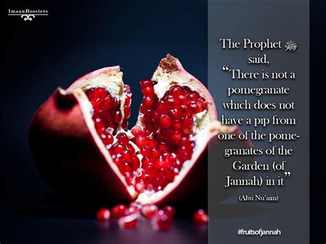 fruit of islam pomegranate islam allah fruit jannah sunnah muslim