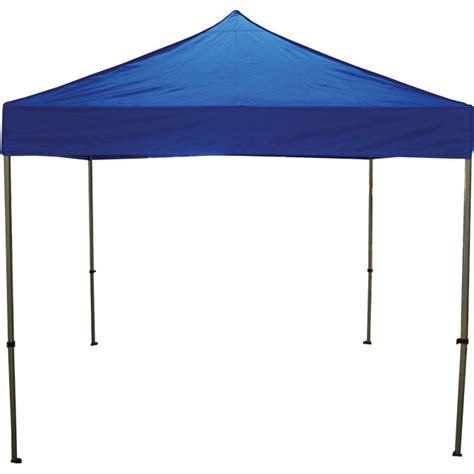 10 L Shade by 10 X 10 Fast Shade Pop Up Canopy
