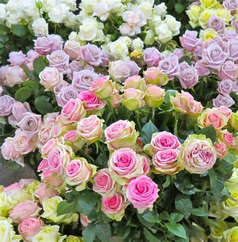 Posy Vase Antique Roses Maison Des Fleurs