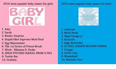 baby yorkie names 2016 most popular baby names for 2016 most popular baby names for boys baby