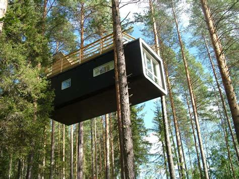 tree house the tiny life
