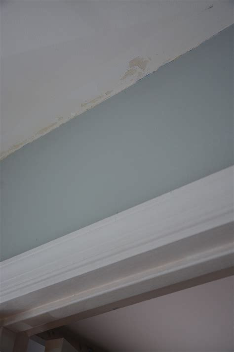 how to put up crown molding like a novice moldings damaged ceiling thrift diving blog