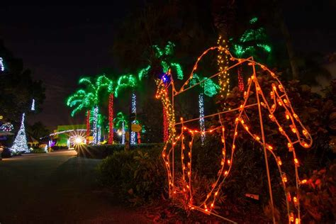Where To See Christmas Lights In Miami And Fort Lauderdale Zoo Miami Zoo Lights