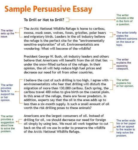 Persuasive Essay For Middle School persuasive essay exles middle school