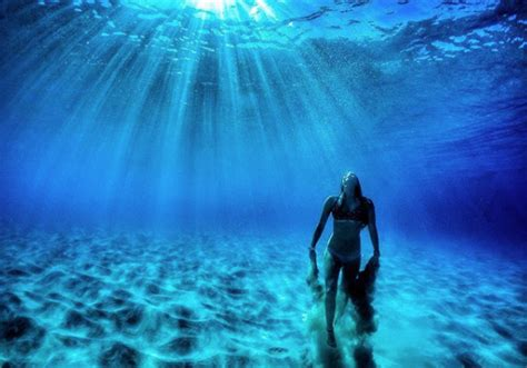 perfect underwater pictures   iphone hitcase