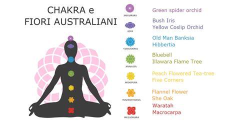 fiori australiani funzionano i fiori australiani per riequilibrare i chakra