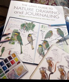 the laws sketchbook for sketching in nature john muir laws laws guide to nature drawing and journaling