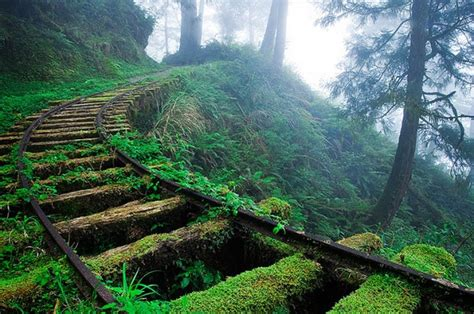 daydreams lincoln nh jiancing historic trail in taipingshan national forest in