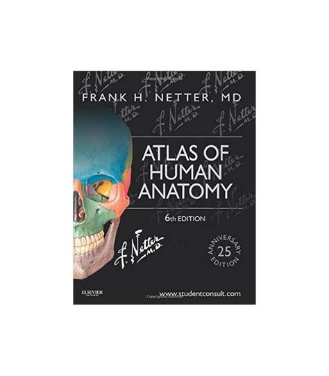 bu bourgery atlas of anatomy atlas of human anatomy 6th edition frank h netter