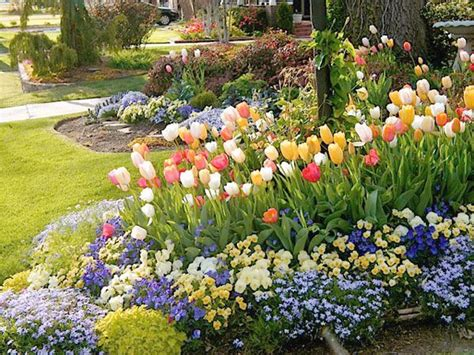 Pansy Garden Ideas 29 Best Images About Front Flower Bed Ideas On Pinterest Garden Ideas Flower Bed Designs And Kale