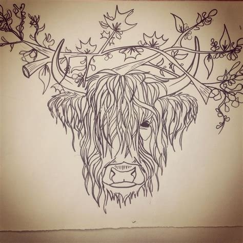 highlander tattoo silly highland cow sketch wallpapers backgrounds