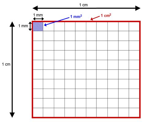 Meter Squared To Feet Squared by Conversion From Millimeter To Centimeter