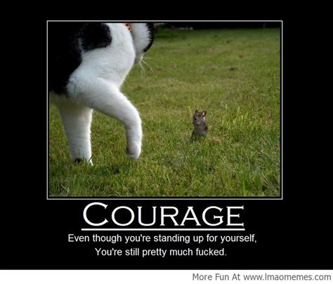 Courage Memes - courage doesn t always mean victory lmao memes