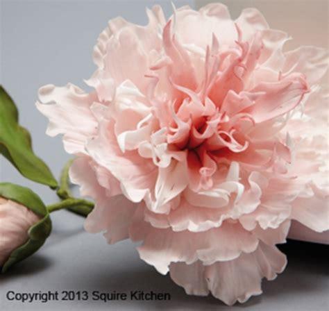 fiori cake design vinci il corso peonia di paddi clark a a prezzo