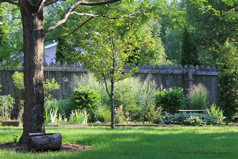 a backyard a favorite place for inspiration terri s notebook