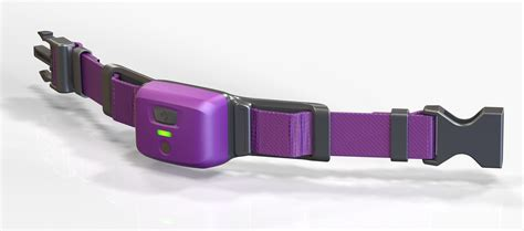 smart collar bluepearl to move forward with petpace smart collar technology