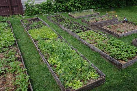 Intensive Gardening Layout Bio Intensive Gardening