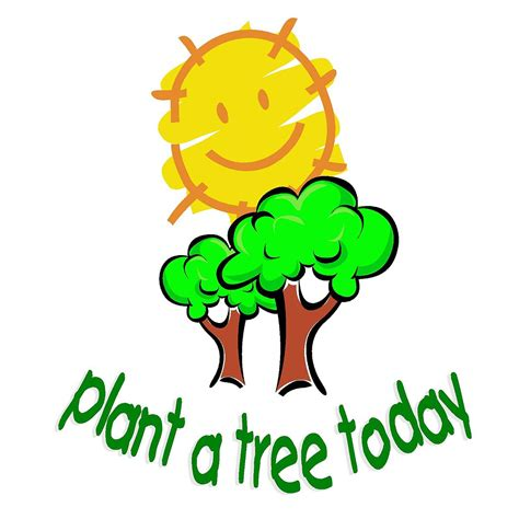 plant a tree plant a tree today foundation
