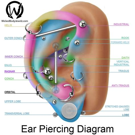 tattoo pain vs nipple piercing pain tragus antitragus conch inner upper outer daith