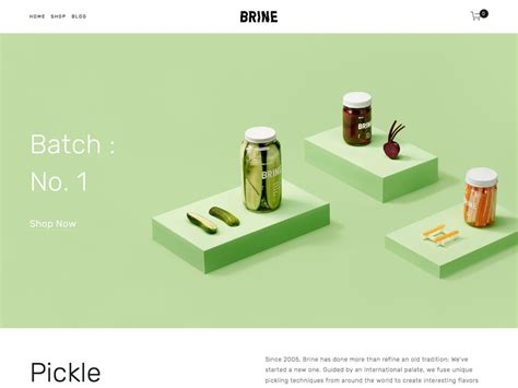 Brine Squarespace Template Analysis Using My Head Squarespace Expert Designer And Trainer Squarespace Maple Template