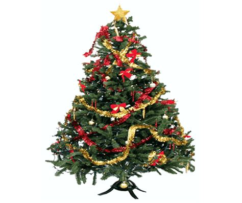 how to green your christmas tree inhabitat green