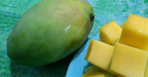 Kacamata Mango 6 through my glasses kacamata perlis mango education