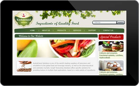 Professional And Responsive Website Templates Www Hdwallpapers88 Com Professional Responsive Website Templates