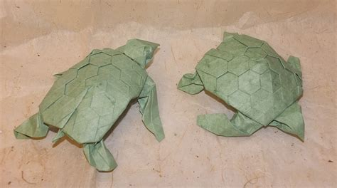 origami turtle pdf origami turtle pdf image collections craft