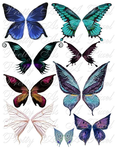 Butterfly Wings simple butterfly wing design www imgkid the image