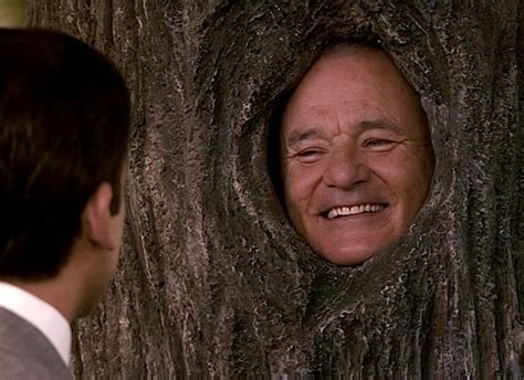 bill murray get smart the roles of a lifetime bill murray movies