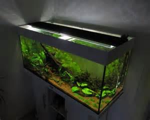 beleuchtung aquarium aquarium led beleuchtung selber bauen schullebernd s
