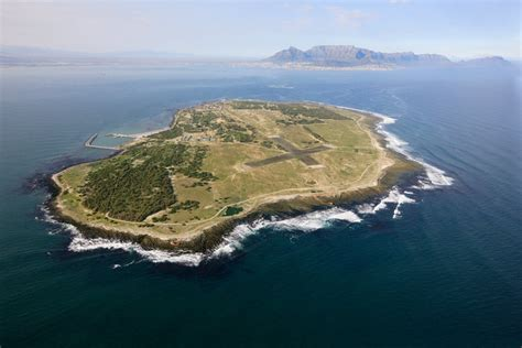 flocking to robben island tourists by day poachers by
