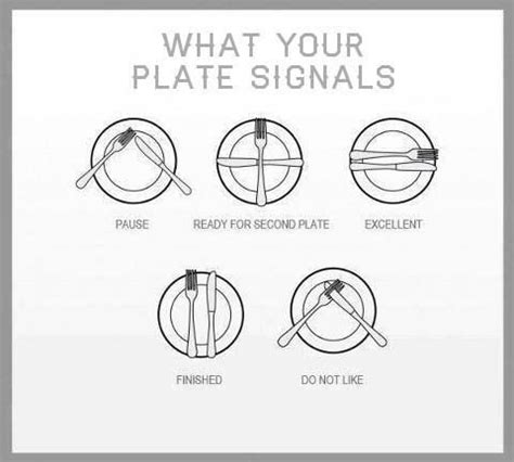 Dining Table Manners And Etiquettes Table Manners What Your Plate Signals Skills Tables Manners And Plates